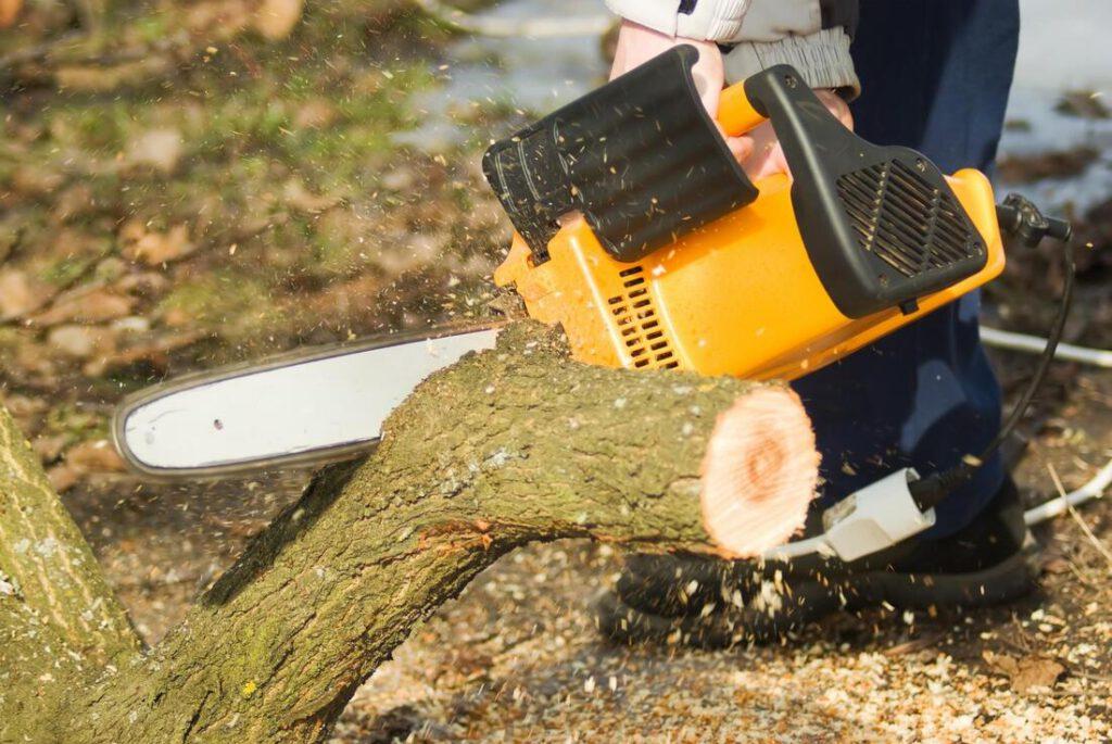keller-tree-service-pros-emergency-tree-service-1_orig