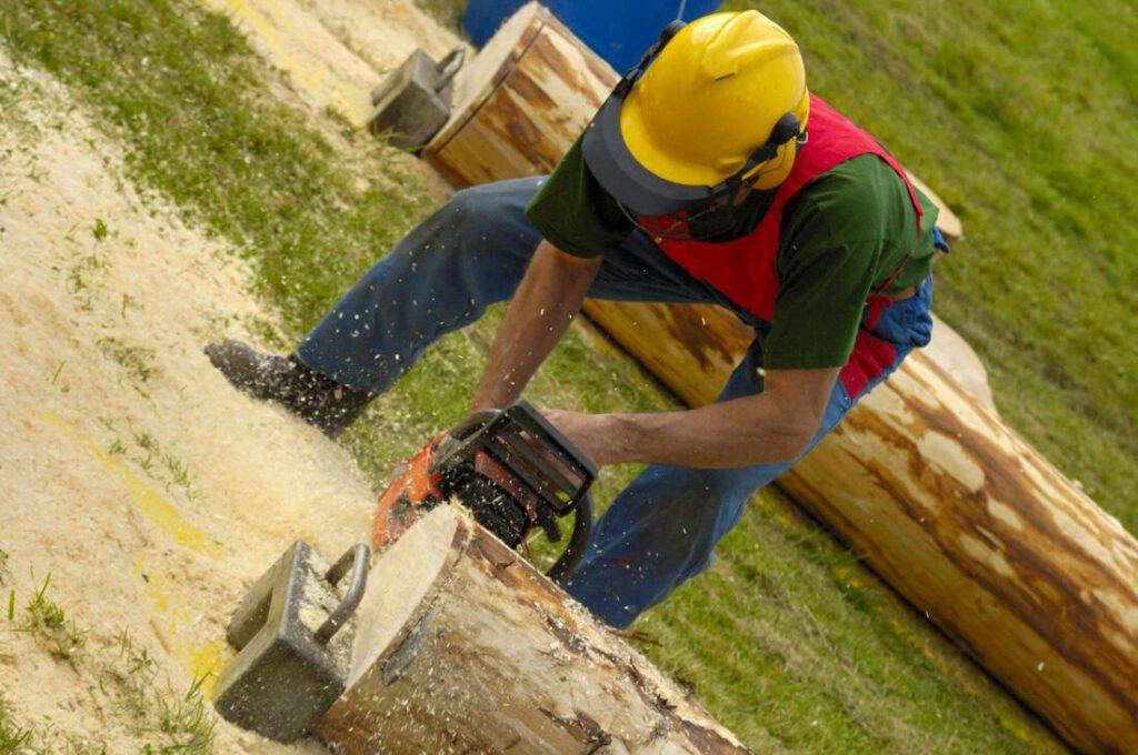 keller-tree-service-pros-tree-removal-disposal-1_orig